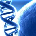 Clonazione ,  clonaggio  e  aspetti bioetici
