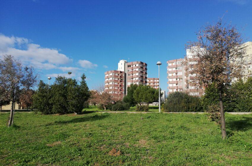 Lecce, progetti sociali: la giunta concede tre aree verdi alle associazioni