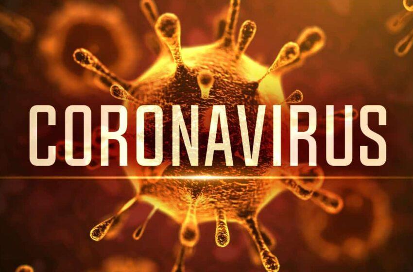 Coronavirus Puglia: bollettino epidemiologico del 26/3, nuovo record di casi