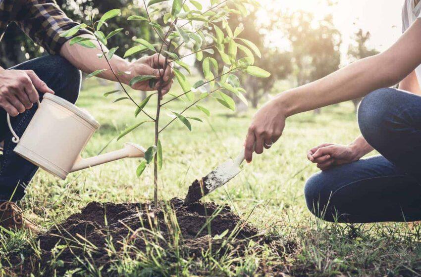 Giugliano nella rete internazionale delle scuole per l'Ambiente