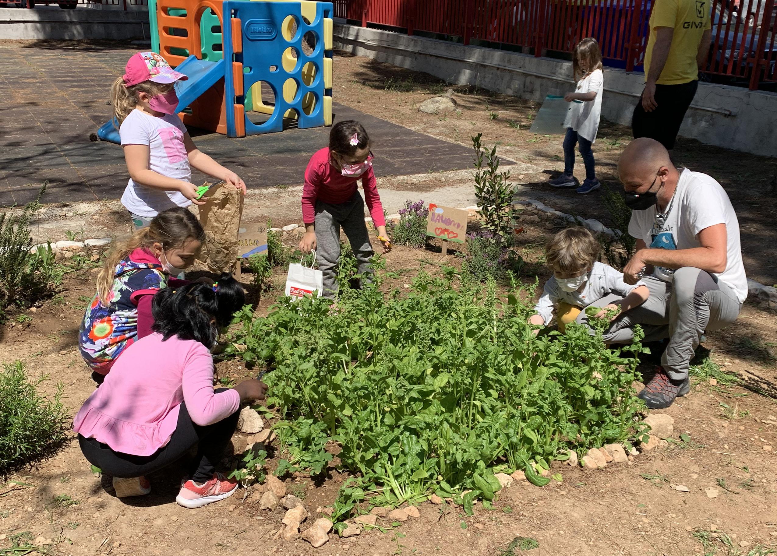 Taranto:il raccolto dei bambini nell'orto didattico di Basequa