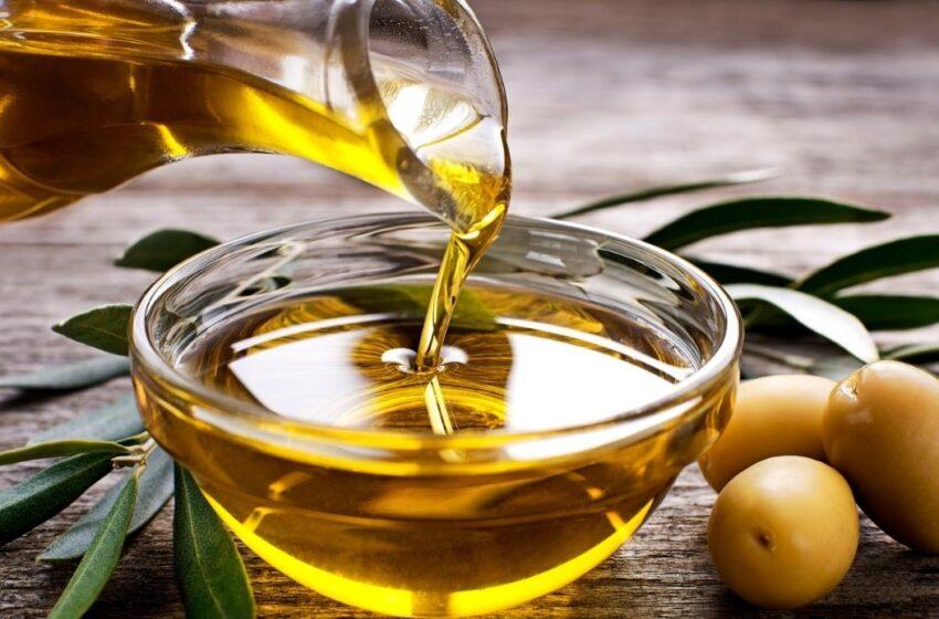 Coldiretti Calabria: stagione ottima per l'uliveto Calabria ma aumenta l'importazione di olio straniero