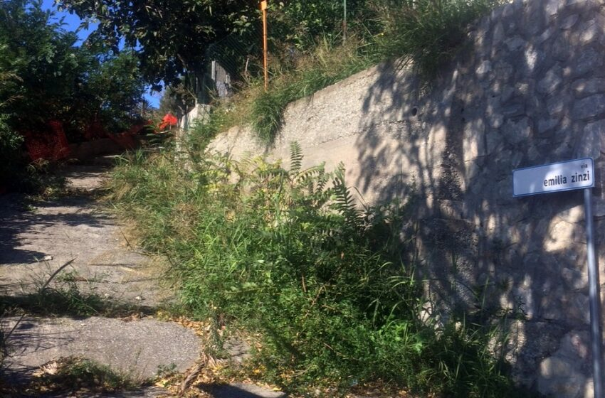 Emilia Zinzi: nel centenario della nascita dell'illustre catanzarese il suo nome è ancora ricordato in una strada abbandonata