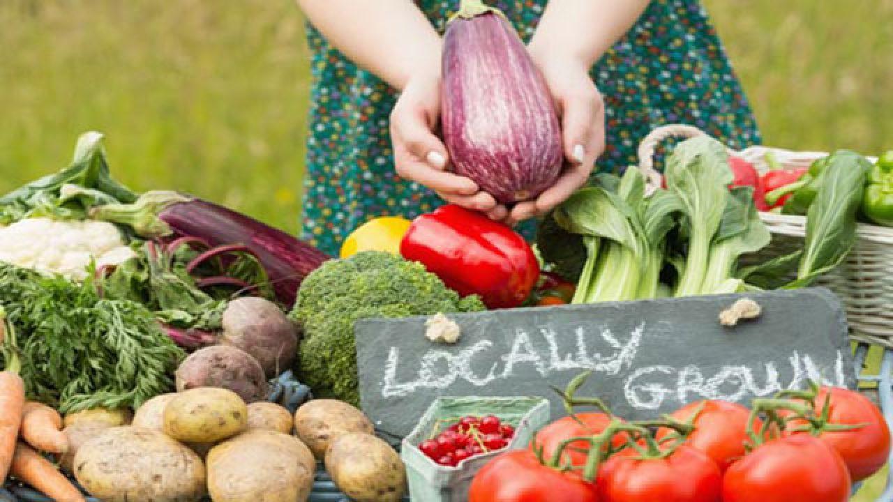 """Puglia,""""alimentazione@web"""": presentazione delle attività solidali su alimentazione bio e a km zero"""