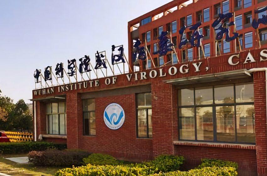 Covid: Pechino  condanna la proposta dell'OMS di indagare sui laboratori cinesi